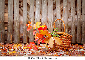 Basket with autumn leaves