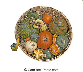 Basket with colorful pumpkins