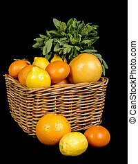 basket with different fruits in season