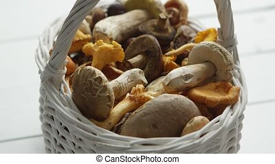 Basket with different kind of forest mushrooms on a white ...