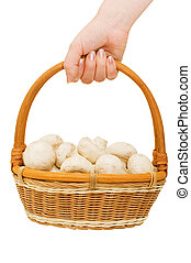 Basket with field mushrooms in a hand