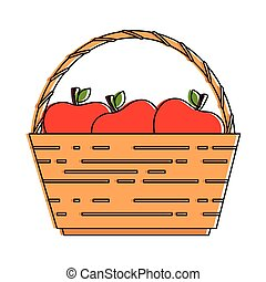 basket with fresh apples