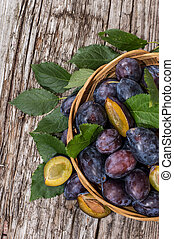 Basket with fresh Plums