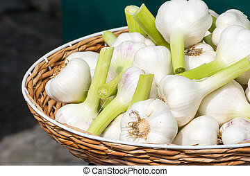Basket with Garlic at the Market