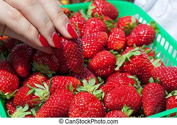 Basket with juicy strawberries