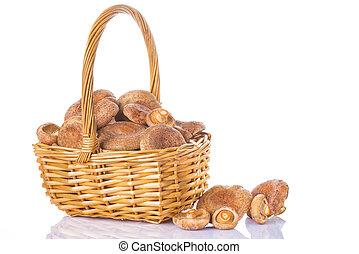 Basket with saffron milk caps isolated
