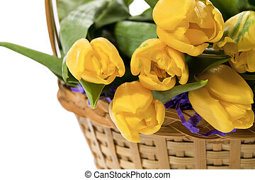 basket with yellow tulips - A close-up cropped image of a...