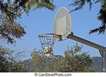 basketball in a outdoor park