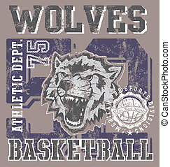 basketball team wolves