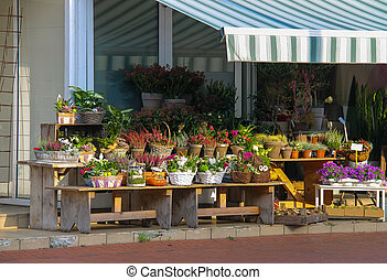 Baskets and pots with plants on the wooden benches in front of the flower shop in  Zwanenburg, the Netherlands
