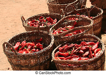 Baskets of Chile Peppers (Capsicum annuum) - Willow baskets...