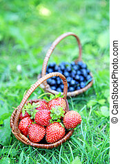 Baskets of strawberries and blueberries in the green grass