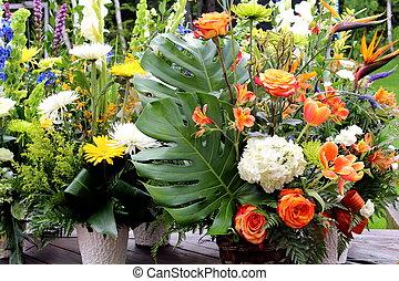 Baskets of various flower arrangement