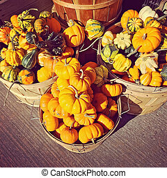 Baskets with pumpkins and gourds at the market