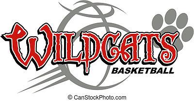 basquetebol, wildcats