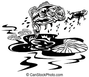 Bass catching a frog - Illustration of a bass