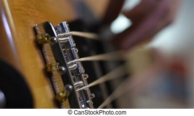 Bass Guitarist Plays Music