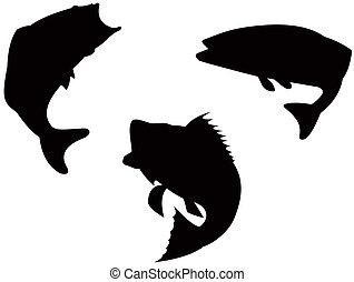 Bass silhouette - Illustration on bass fish