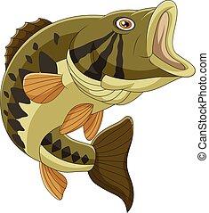 basse, fish, isolé, fond, blanc, dessin animé