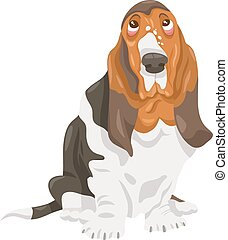 basset, chien, illustration, dessin animé