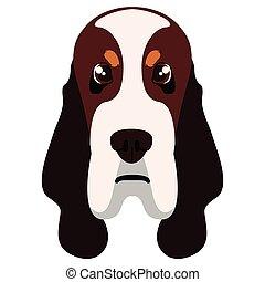 Basset hound avatar