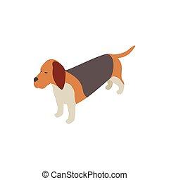 Basset hound dog icon, isometric 3d style