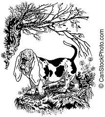 basset hound illustration - hunting dog in forest, basset ...