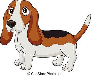 basset, isolé, chien, fond, blanc, chien de chasse, dessin animé