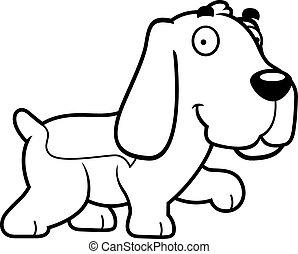 basset, marche, chien de chasse, dessin animé