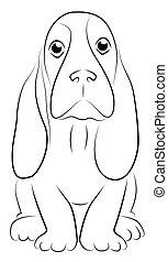 Basset Puppy