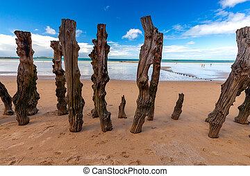 basso, saint-malo., spiaggia, tide., sabbioso