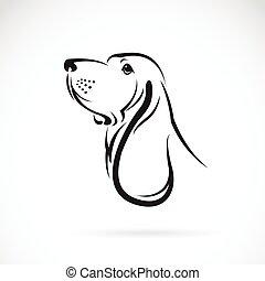 bassotto, testa, immagine, vettore, fondo, bianco, cane da ...