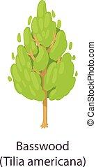 Basswood icon, flat style - Basswood icon. Flat illustration...