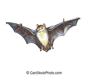 bat - Flight of a bat. Hand drawing watercolor