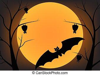 Bat flying in the night