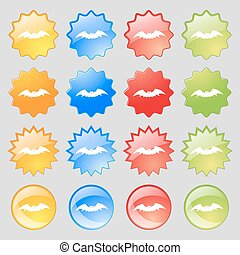 bat icon sign. Big set of 16 colorful modern buttons for your design. Vector