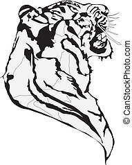 bataille, tigres