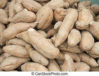 Fresh vegetables batat- sweet potato in china