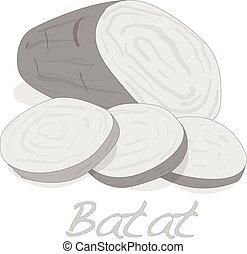 Batat, sweet potato vector