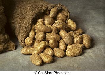 batatas, derramado, saco burlap
