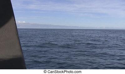 bateau, mer, voile, vue
