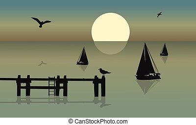 bateau, silhouette, oiseau