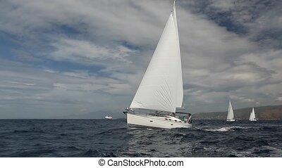 bateau, voile, luxe, regatta.