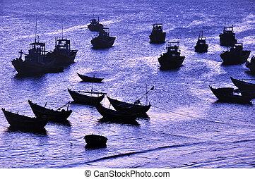 bateaux, baie