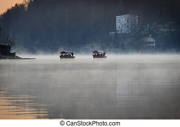 bateaux, flotter, brume