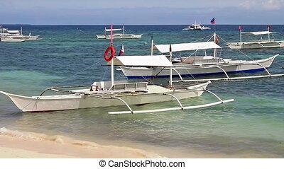 bateaux, rivage, blanc