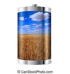 bateria, campo, trigo