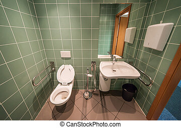 bathroom for the disabled
