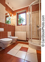 Bathroom with shower - Toilet, bidet and shower in new...