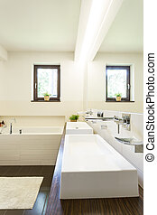 Bathroom with two wash basins